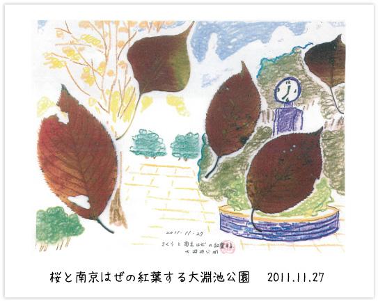 桜と南京はぜの紅葉する大淵池公園