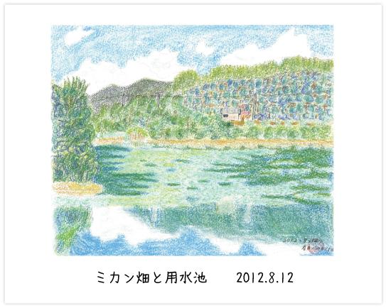 ミカン畑と用水池