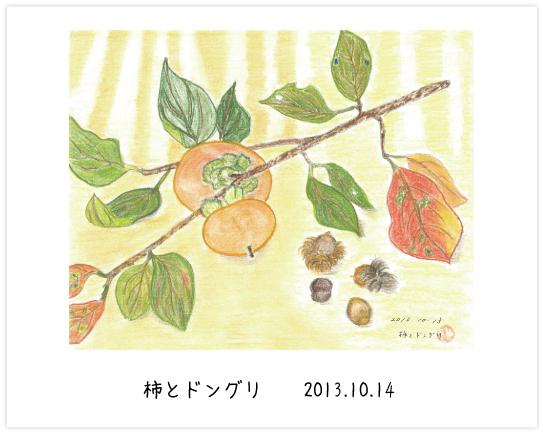 柿とドングリ