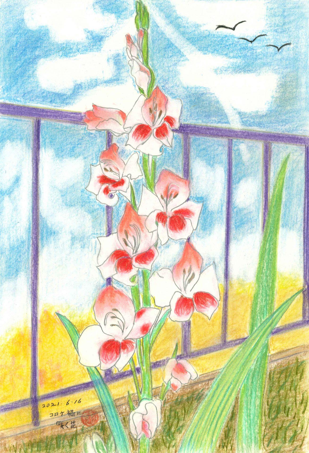 コロナ禍に咲く花